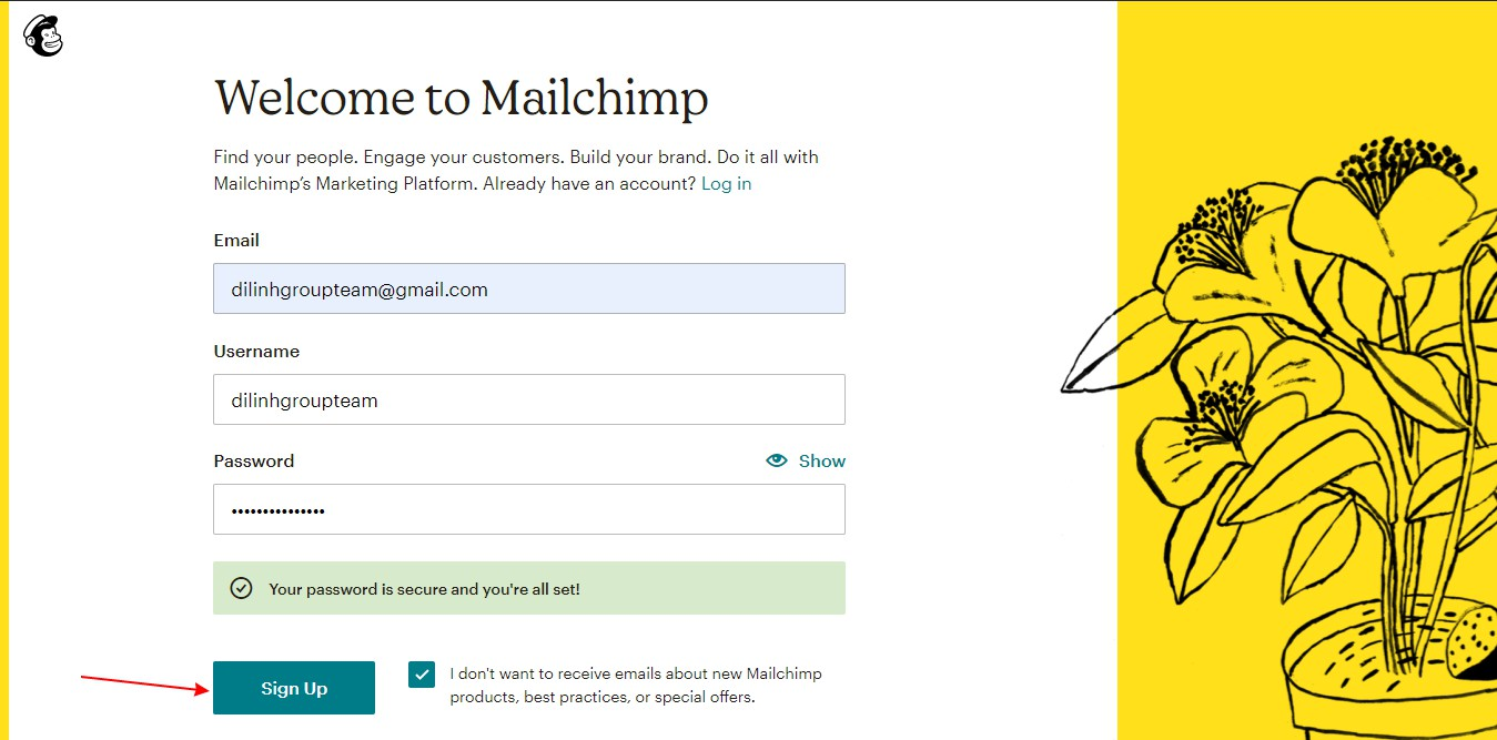 Hướng dẫn sử dụng mailchimp 2021